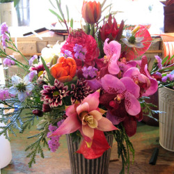 荒木町に贈る大きなアレンジメント グズマニアと胡蝶蘭