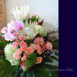 お祝いの花 大きめアレンジメント 二子玉川の花屋 ネイティブフラワーイーダ ホワイトキングプロテアと胡蝶蘭