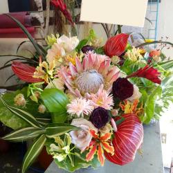 新橋に贈るお祝い花 アレンジメント 生花アレンジピーチネイティブ