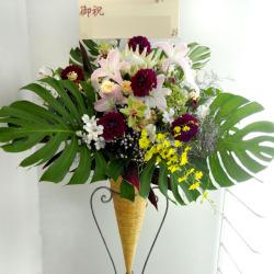信濃町に贈る開店祝いスタンド花 グリーンバタフライ