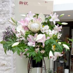 5月の花「ユリ」おすすめフラワーギフト