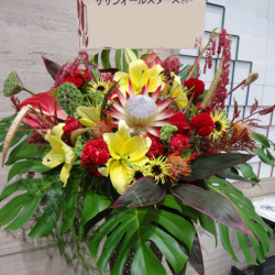 信濃町に贈るお祝いスタンド花 トロピカリア