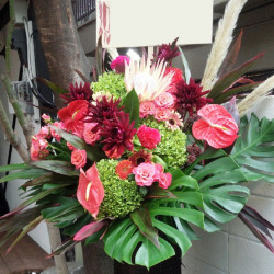 港区芝に贈るお祝いスタンド花 モロロカ