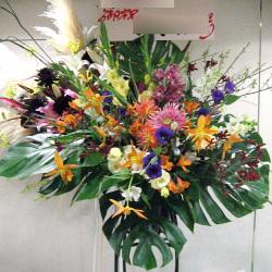 渋谷区本町に贈るスタンド花 スターフラワー