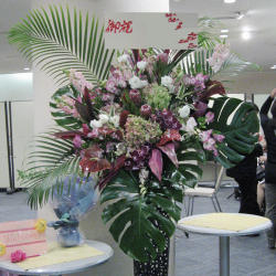 市谷砂土原町に贈るお祝いスタンド花 プロテアアイス