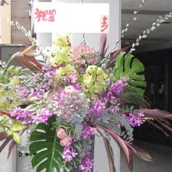 宮坂に贈るお祝いスタンド花 シンビジューム