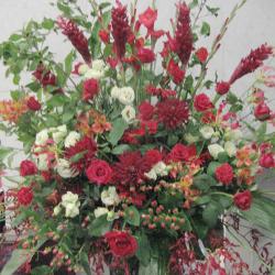 市谷加賀町に贈るお祝いスタンド花 レッドジンジャー