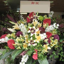 市谷砂土原町に贈るお祝いスタンド花 ハワイアン