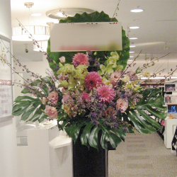 狛江市に贈るお祝いスタンド花 ピンクダリア