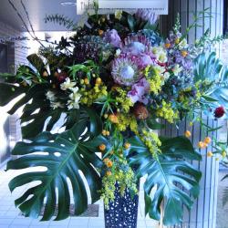 市谷砂土原町に贈るお祝いスタンド花 モンステラとサンダーソニア