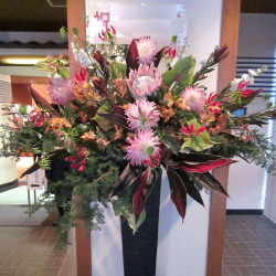 世田谷区に贈るお祝いスタンド花 アトムとリュウカデンドロンエキゾチック