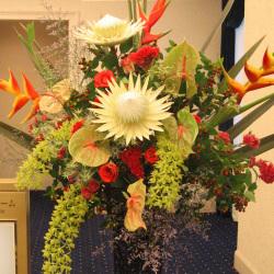 市谷砂土原町に贈るお祝いスタンド花 ヘルコニアとグラマト