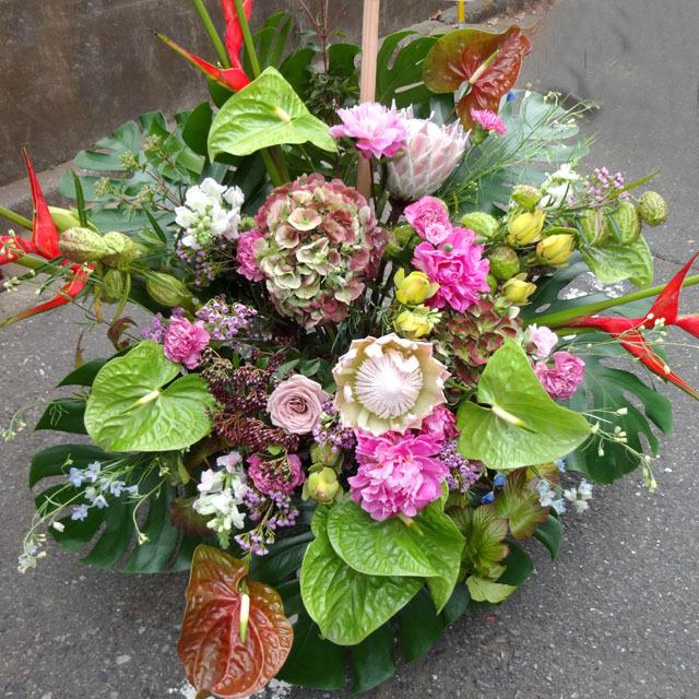 8月の花「アンスリウム」おすすめフラワーギフト