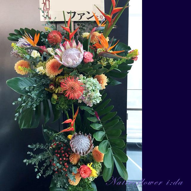 東京に贈るお祝い花 アレンジメント ヘリコニアロケット 二子玉川の花屋 ネイティブフラワーイーダ