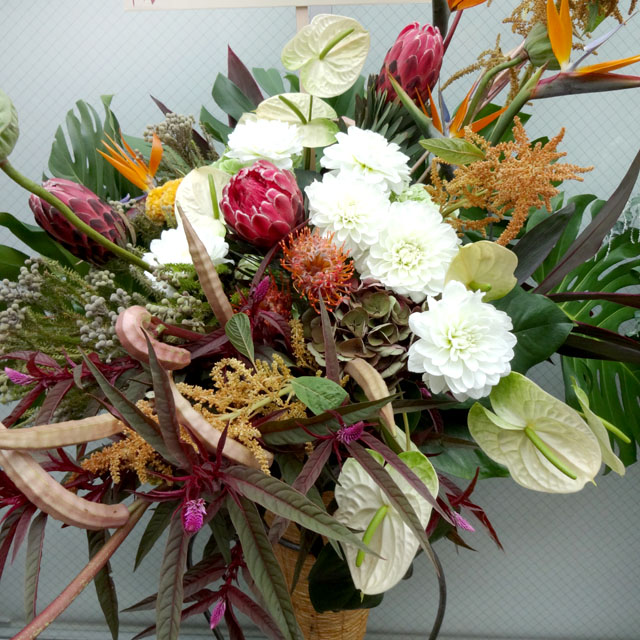 美容室の開店祝いスタンド花 お祝いスタンド花 オリジン 二子玉川の花屋 ネイティブフラワーイーダ