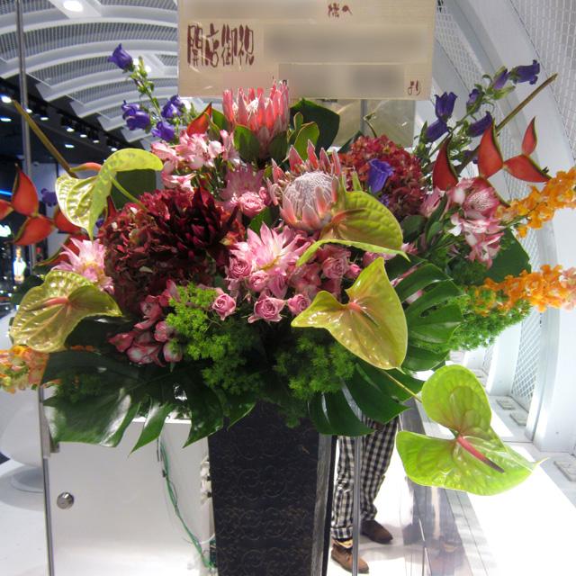 開店祝い 花 キングプロテアとビッグアンス スタンド花 東京 二子玉川の花屋 ネイティブフラワーイーダ