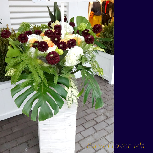 開店祝いスタンド花 お祝いスタンド花 スタンド花・アトムとリュウカデンドロンエキゾチック 二子玉川の花屋 ネイティブフラワーイーダ