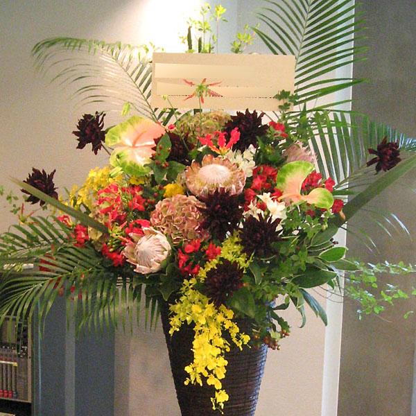 開店祝いスタンド花 お祝いスタンド花 ネイティブマカナ
