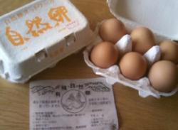 草薙さんの自然卵( 6個入り)