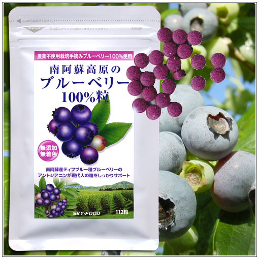 ブルーベリー100%サプリメント無農薬無添加