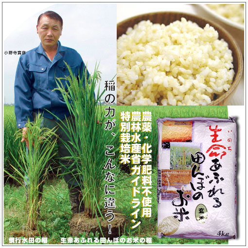 無農薬特別栽培米玄米