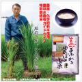 オーガニック無農薬胚芽米