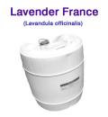 ラベンダー(フランス産・真正ラベンダー・イングリッシュラベンダー、Lavandula officinalis)/25lbs(約11kg)【ポイント対象外商品】