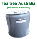 �ƥ����ĥ�ʥ������ȥ�ꥢ�� �ƥ����ȥ�����ƥ����ȥ��Melaleuca alternifolia��/����25lbs����11kg��