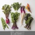 からふる野菜セット/静岡・沼津「REFS」」×N Drive企画