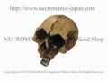 【ネクロマンス NECROMANCE】 リアルスカルヘアークリップ Real Skull Hairclip 骸骨 髪留め
