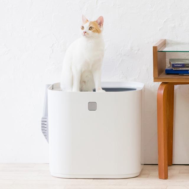 トイレと猫さん