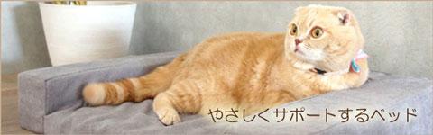 高齢猫用ベッド