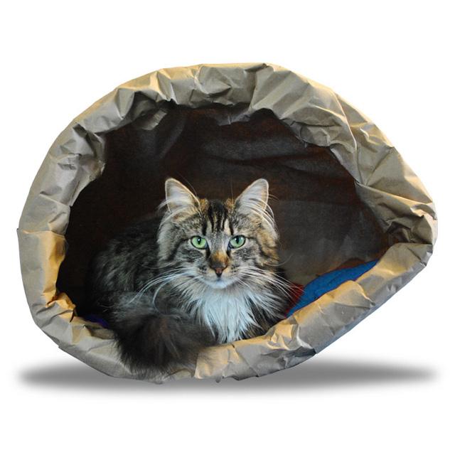 猫の紙袋ベッド