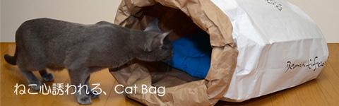猫の紙袋ハウス