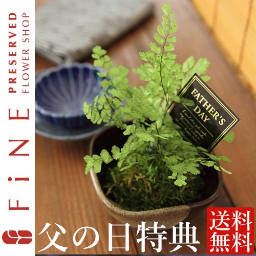 ぷり盆栽(G対象)|和風プリザーブドフラワー/インテリアグリーン/父の日/和室インテリア/観葉植物【有料バッグ:S対応】