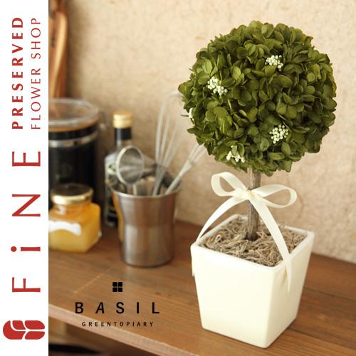 バジルグリーントピアリー(G対象)|インテリアグリーン/開業祝い/開店祝い/引越し祝い/新築祝い/観葉植物【有料バッグ:L対応】