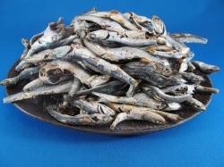 煮干し・いりこ 1kg(熊本牛深産)