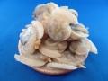 アサジ貝50-80 1kg