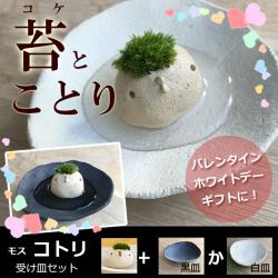 モスモスシリーズ 作家 真山茜氏【モスコトリ(白・ベージュ系)・受け皿セット】