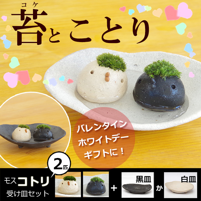 モスモスシリーズ 作家 真山茜氏【モスコトリ2匹・受け皿セット】