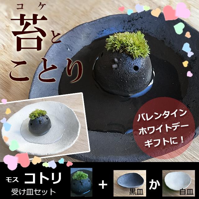 モスモスシリーズ 作家 真山茜氏【モスコトリ(黒・グレー系)・受け皿セット】