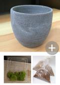 盆栽キット 灰
