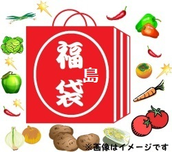 【福島袋10000円】中味は??(税・送料込(東日本))