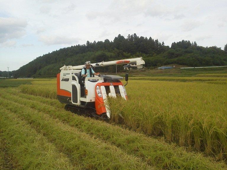 二本松農園の平成28年産コシヒカリ精米2kg