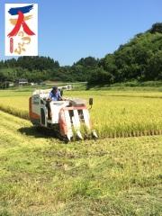 福島県推奨米〜天のつぶ〜【二本松農園】