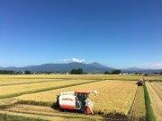 極上米!会津湯川村の特別栽培米コシヒカリ精米5kg【栗城ドリームファーム】