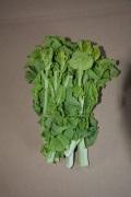 ★単品★二本松農園の「菜花」有機的に栽培