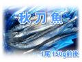秋刀魚 1尾150g前後 20尾入り