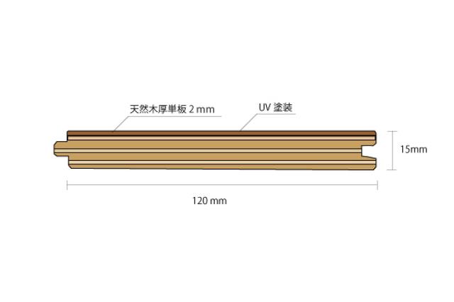 ハードメープル多層複合断面図