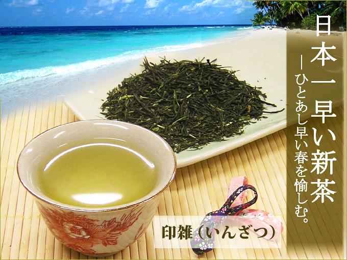 【2017年新茶予約受付】日本一早い新茶「印雑」(50g×2袋)